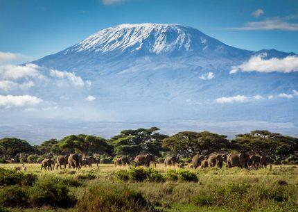 3 days Amboseli national park