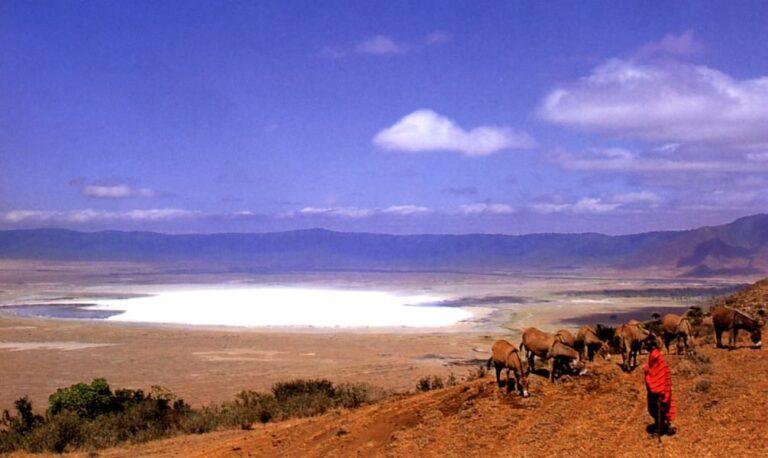 Lake Manyara Nationa Park