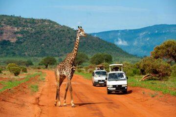3 Days Tsavo East West Safari