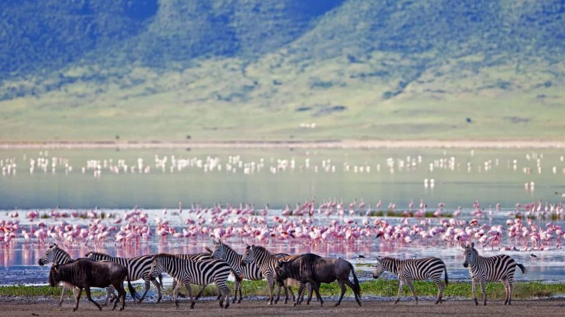ngorongoro crater floor